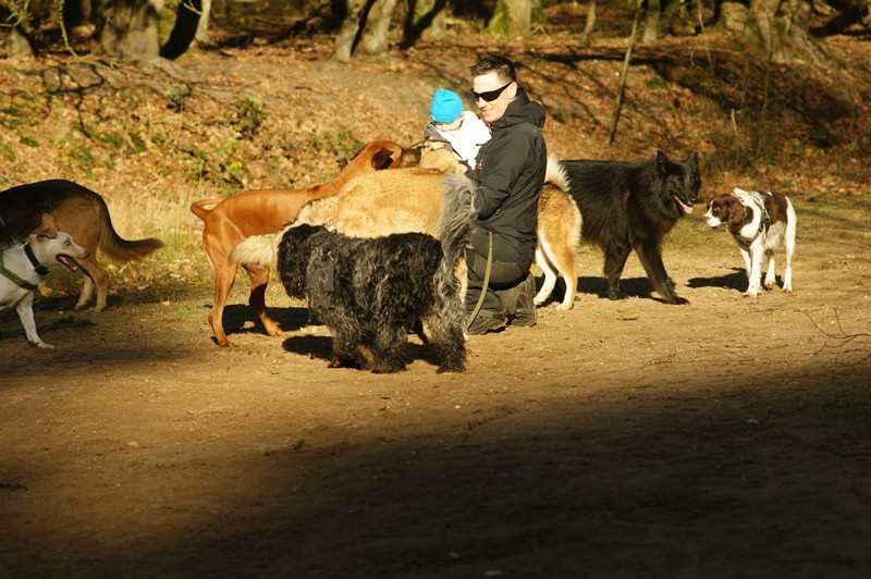 hotdogs wandeling 22 november 2012 27.jpg