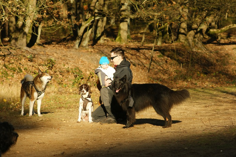 hotdogs wandeling 22 november 2012 30.jpg